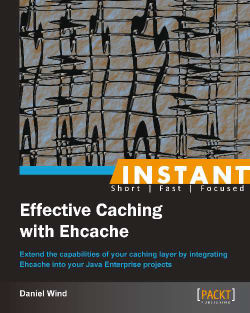 Ehcache monitoring and logging (Intermediate) - Instant