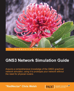 Understanding the topology net file - GNS3 Network Simulation Guide