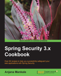 Spring Security with Captcha integration - Spring Security 3