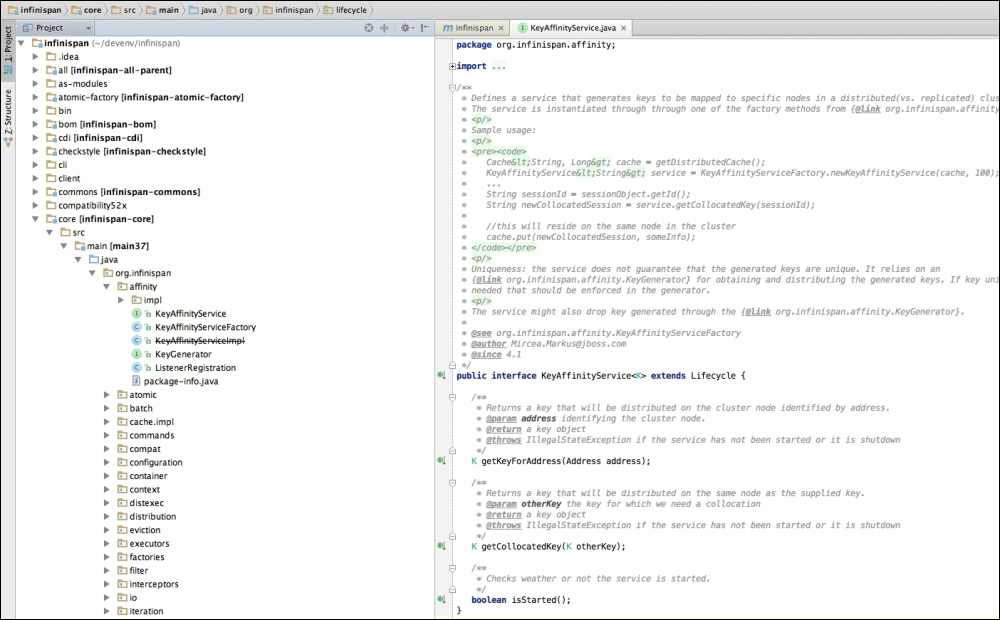 Building Infinispan from source - Infinispan Data Grid