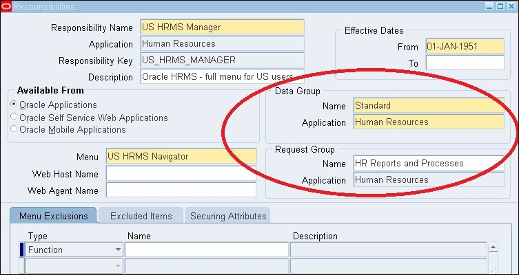 Request and data group - Oracle E-Business Suite R12 x HRMS