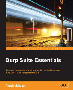 Starting Burp from the command line - Burp Suite Essentials