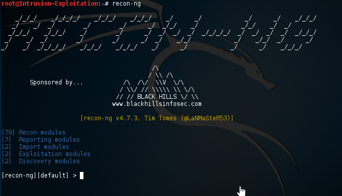 Setting up API keys for recon-ng - Kali Linux Intrusion and