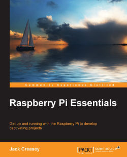 Project 1 – Running raspivid as a background service - Raspberry Pi