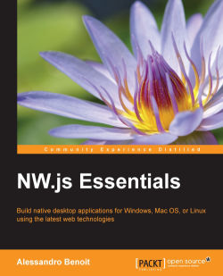 Data persistence solutions - NW js Essentials