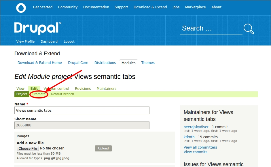 Time for action – promoting the Views semantic module to a