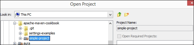 Importing an existing Maven project in NetBeans - Apache