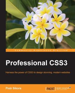 Professional CSS3