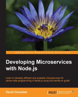 Developing Microservices with Node.js