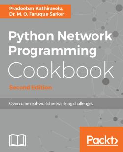 Handling socket errors gracefully - Python Network