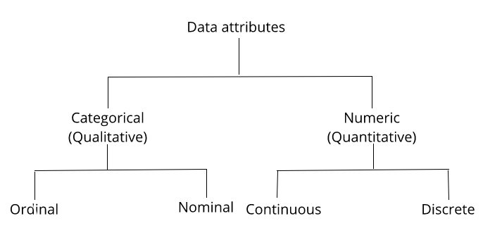 Understanding types of data attributes - Python Natural