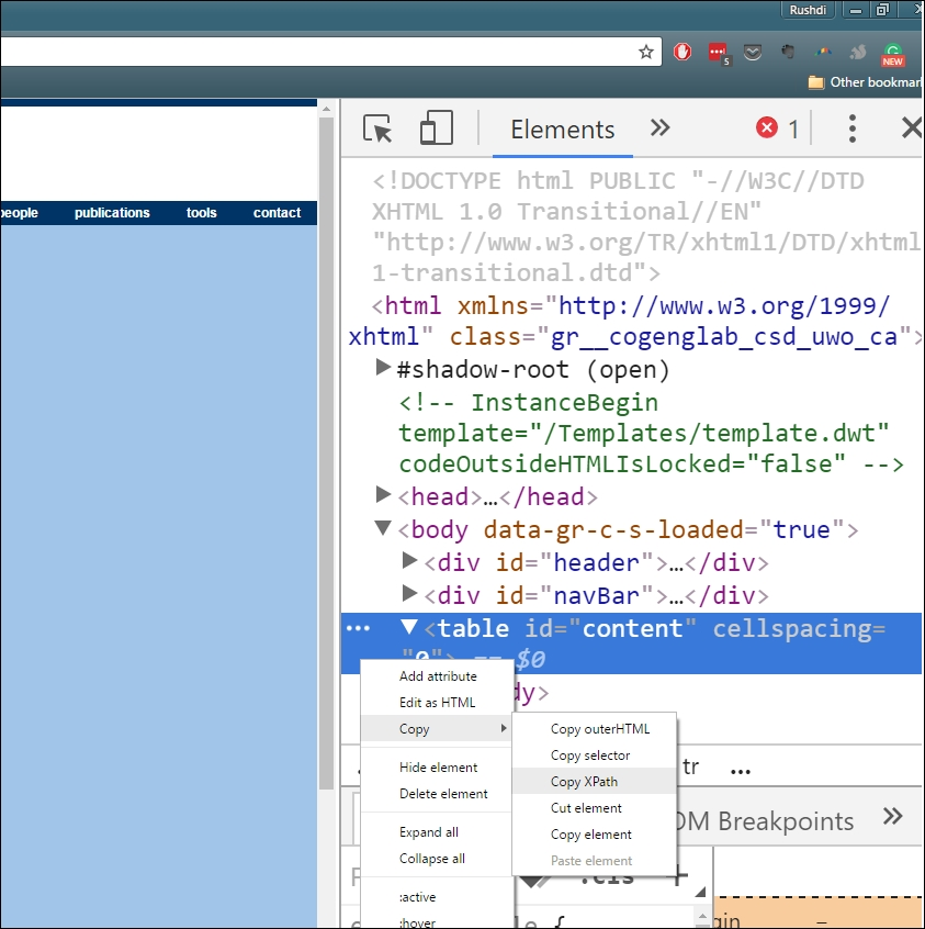 Extracting web data from a website using Selenium Webdriver