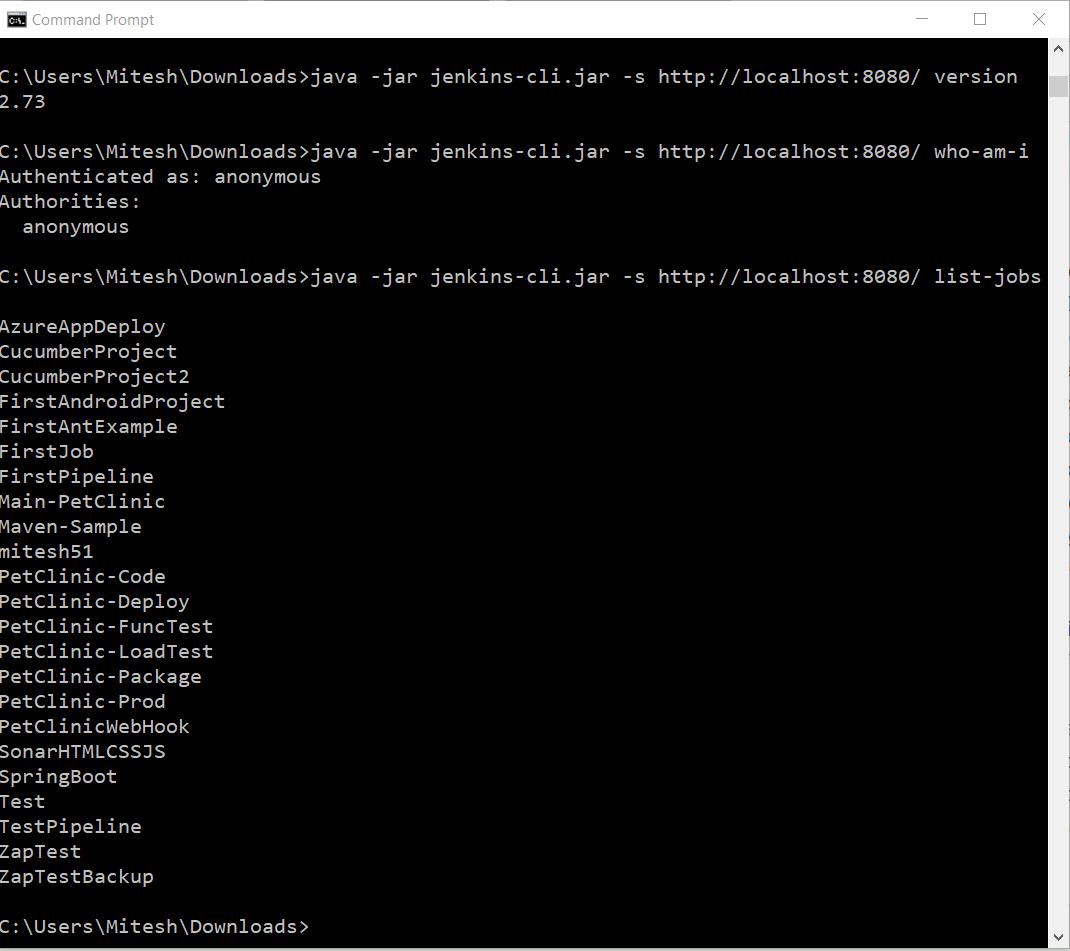 Command-line options in Jenkins using Jenkins CLI - Jenkins