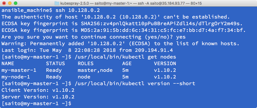 Setting up the Kubernetes cluster on Linux via Ansible