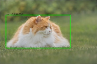 Object detection using MobileNet-SSD - Hands-On Computer Vision with