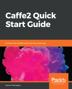Visualizing the ONNX model - Caffe2 Quick Start Guide
