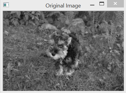 Loading, displaying, and saving images - OpenCV 4 Computer