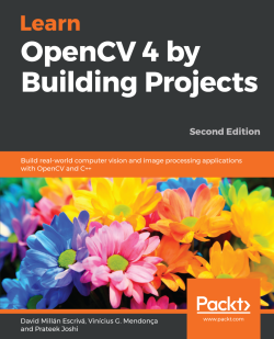 Overlaying a face mask in a live video - Learn OpenCV 4 By