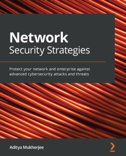 Book cover image for Network Security Strategies