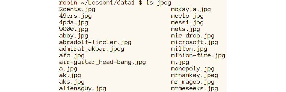 Figure 1.19: A screenshot of a partial output of the .jpeg files within the folder