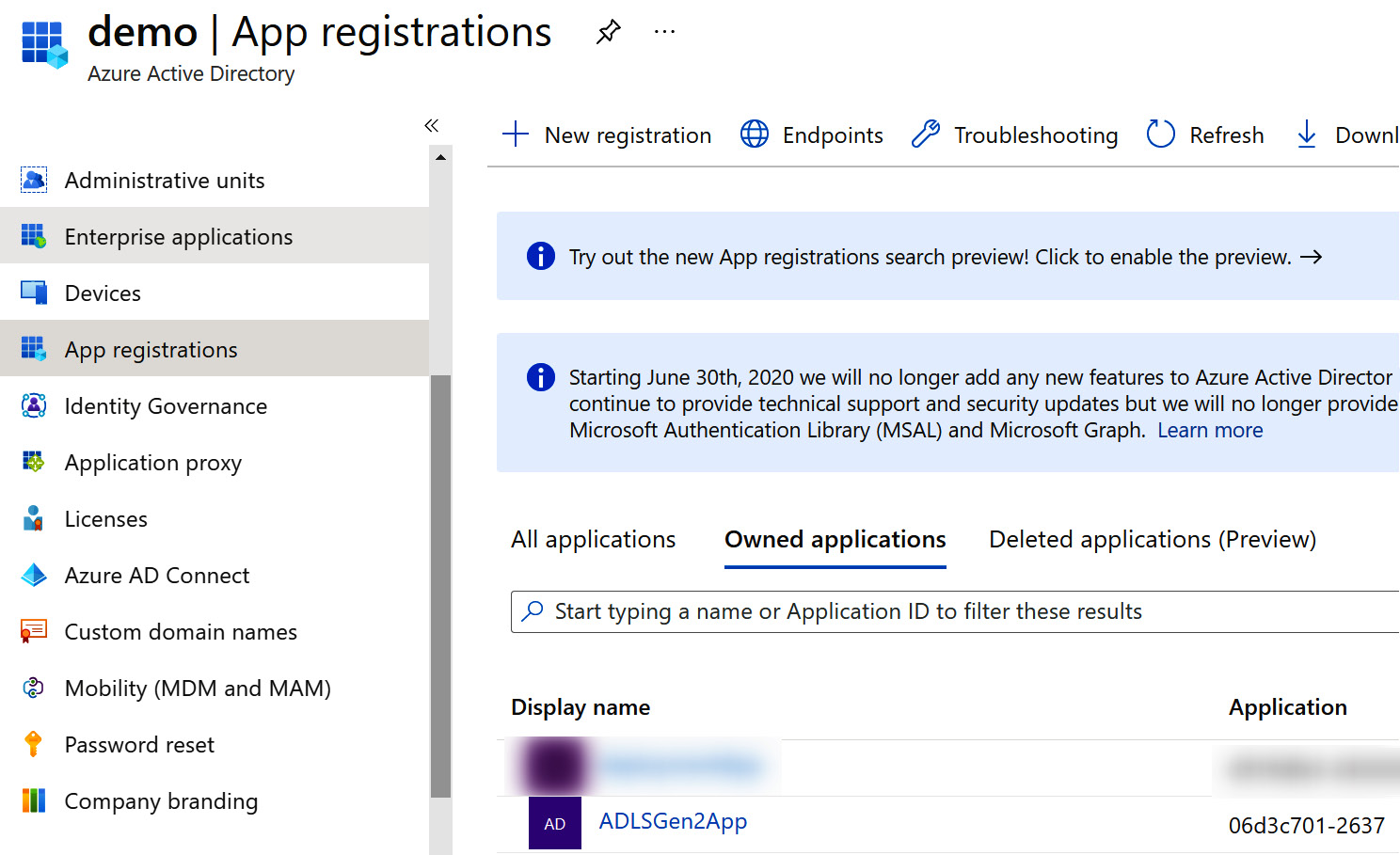 Figure 2.4 – New application created