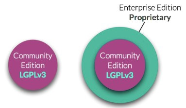 Figure 1.1 – Differences between the Community and Enterprise Editions