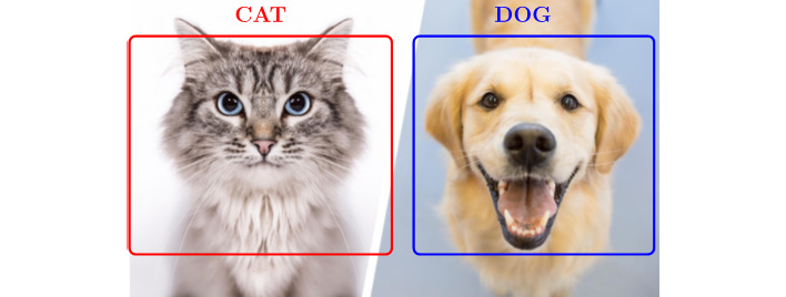 Figure 1.8: Cat and dog detection and classification