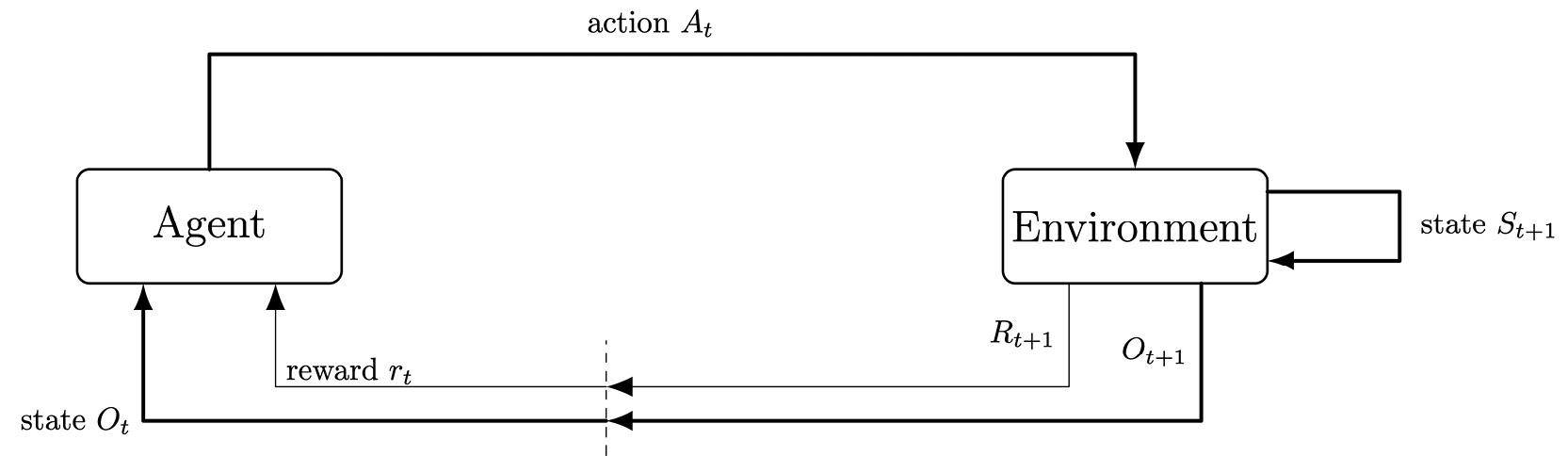Figure 1.13: A representation of a partially observable environment