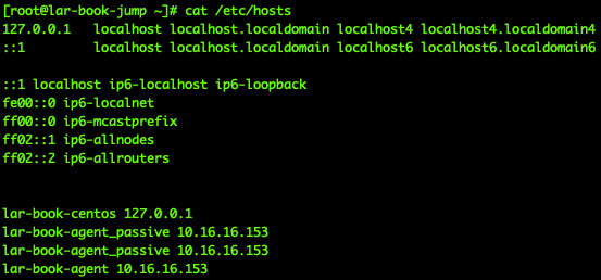 Figure 9.18 – /etc/hosts filled with our script information