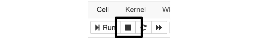 Figure 1.6: Toolbar icon to stop cell execution