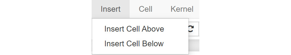 Figure 1.7: Menu options for adding new cells