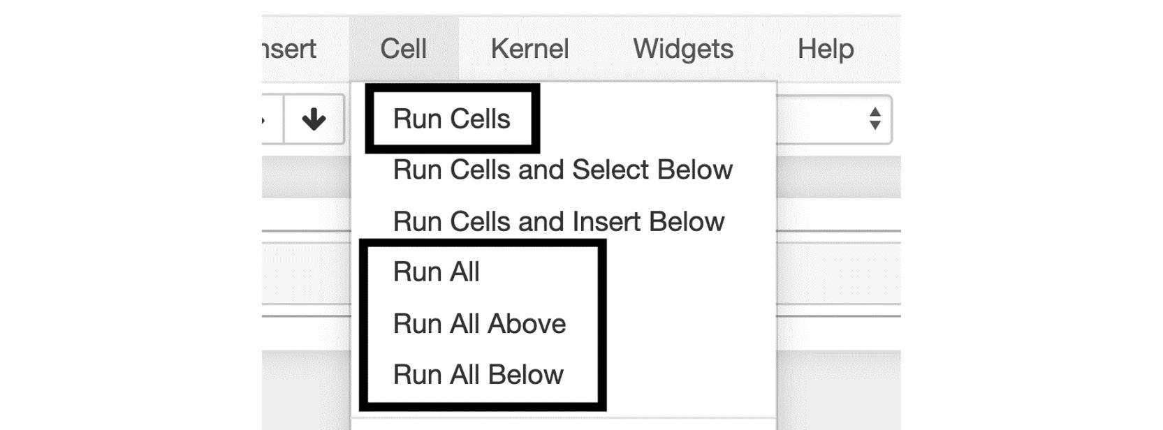 Figure 1.11: Menu options for running cells in bulk