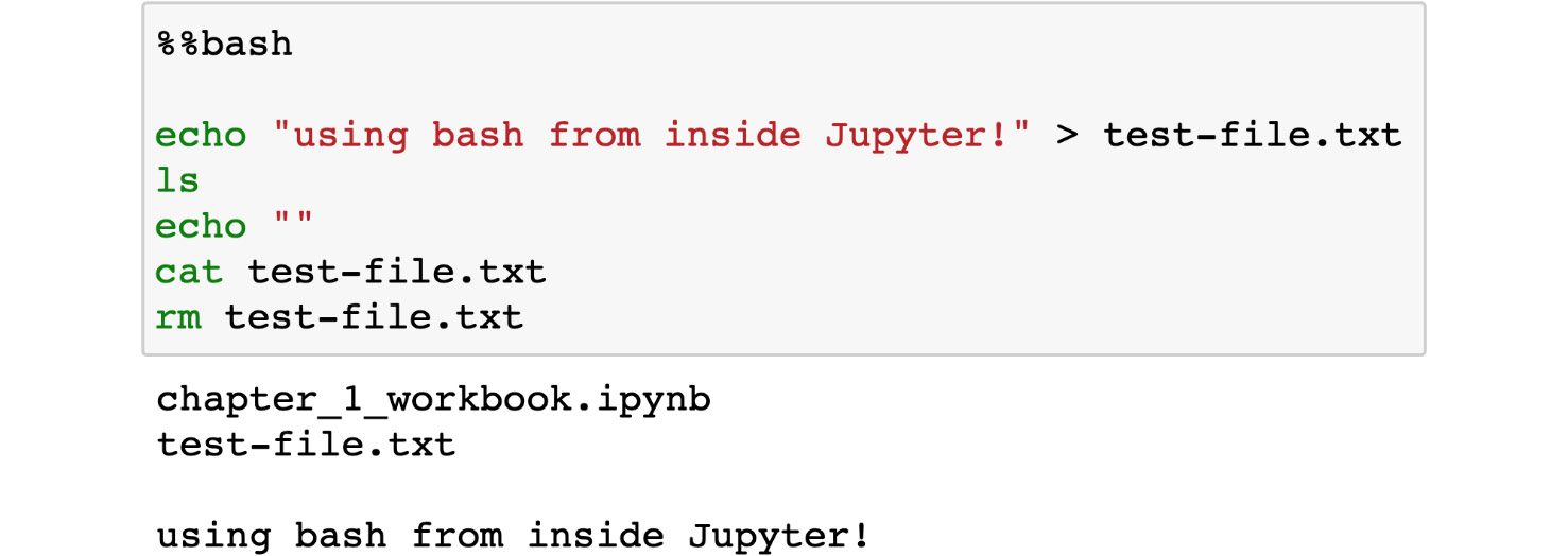 Figure 1.33: Running a bash command in Jupyter