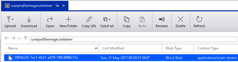 Viewing the output in Azure Storage Explorer