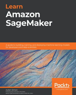 Book cover image for Learn Amazon SageMaker