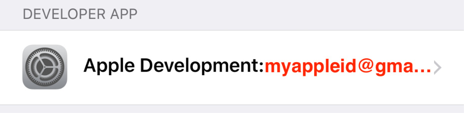 Figure 1.21 – Apple Development section in Device Management settings