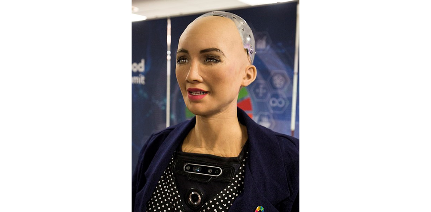 Figure 1.1: Sophia – The first robot citizen at the AI for Good Global Summit 2018 (ITU pictures)
