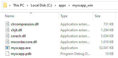 Figure 1.3 – .NET 5 generating a self-contained app in a single .exe file