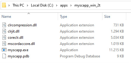 Figure 1.4 – .NET 5 generating a self-contained trimmed app in a single .exe file