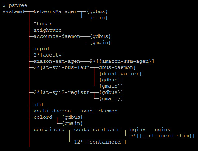 Figure 1.5 – OS processes
