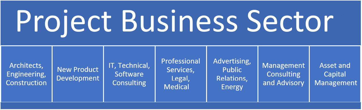 Figure 1.1 – The Project Business sector