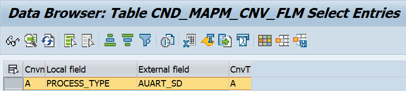 Figure 2.26 – The CND_MAPM_CNV_FLM table maintained with Process_Type