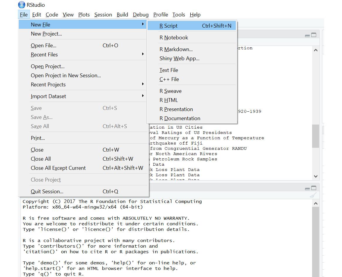 Figure 1.8: A new R script window