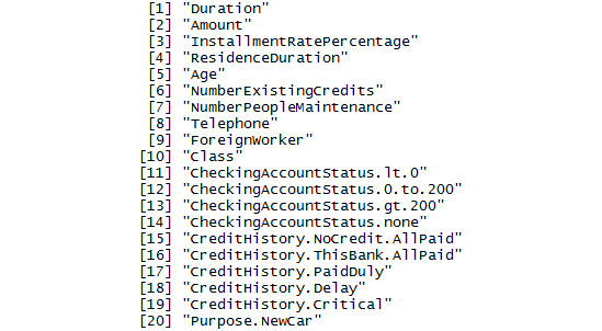 Figure 1.16: A section of names in the GermanCredit dataset
