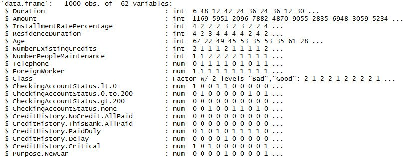 Figure 1.17: A section of names in the GermanCredit dataset
