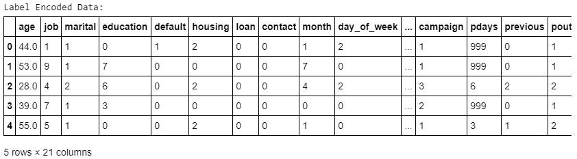 Figure 1.39: Values of non-numeric columns converted into numeric data