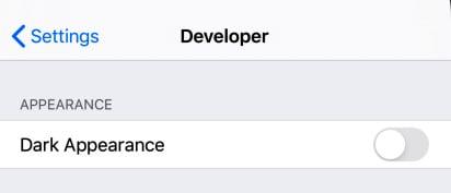 Figure 2.2 – Dark mode developer settings