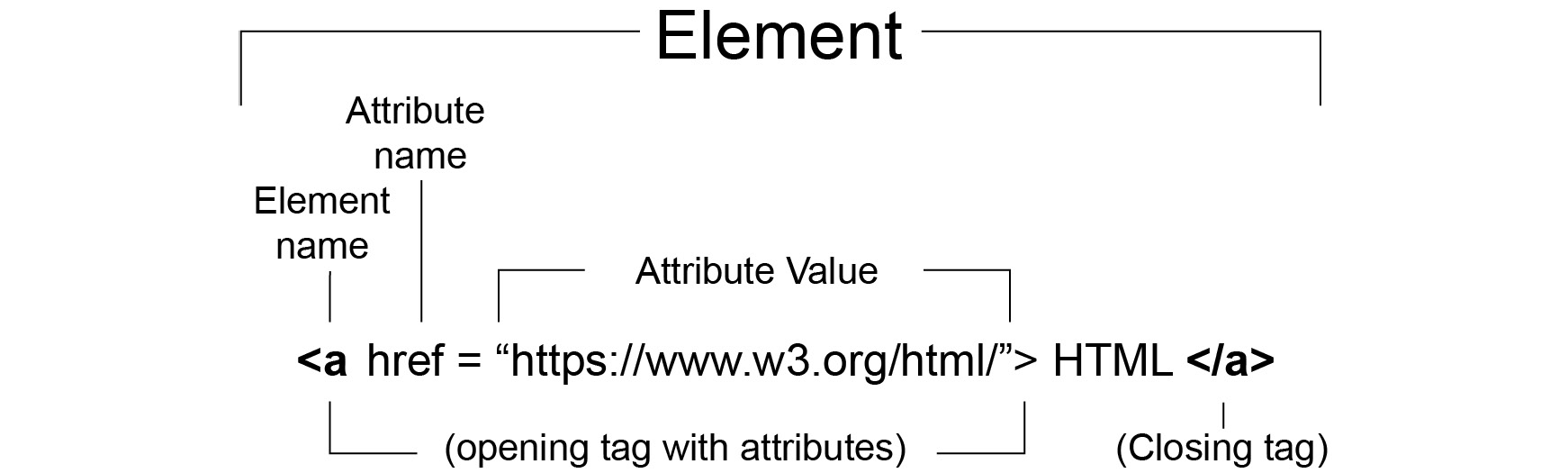 Figure 1.4: HTML element representation with tag attributes