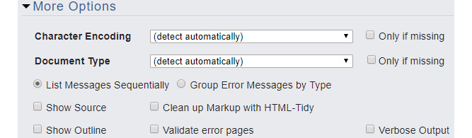 Figure 1.14: The More Options panel of the W3C's Markup Validation Service